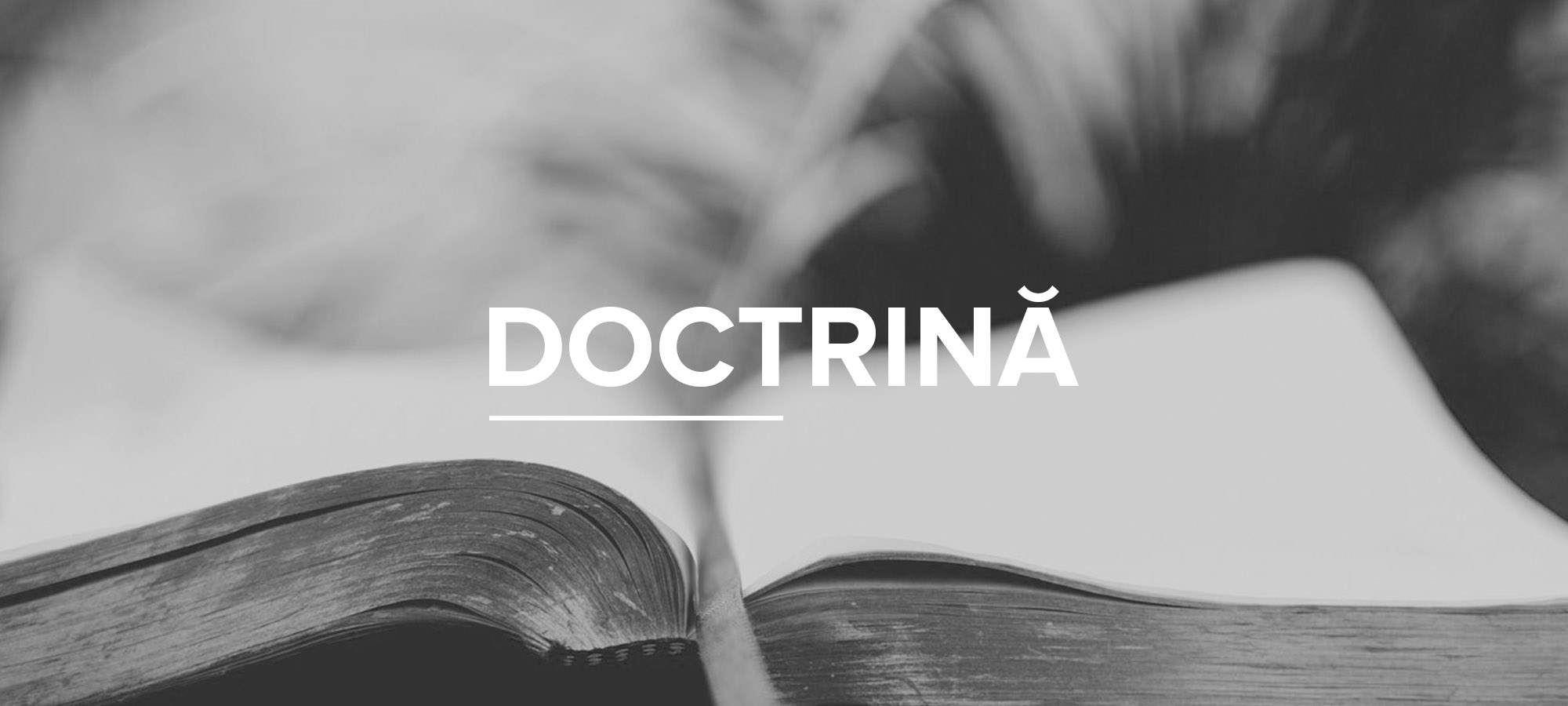 Doctrină